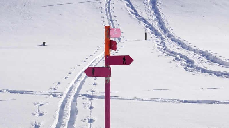 Milieubewust naar de wintersport
