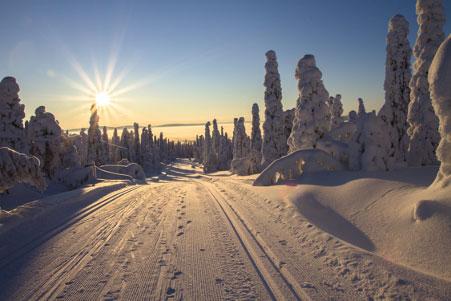 Skiën in Finland? Huur een mökki!